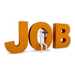 Offre d'emploi : un(e) technicien(ne) marine IT (informatique / communication satellite)