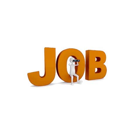 Offre d'emploi - Assistant(e) Polyvalent(e) : Administratif & Communication